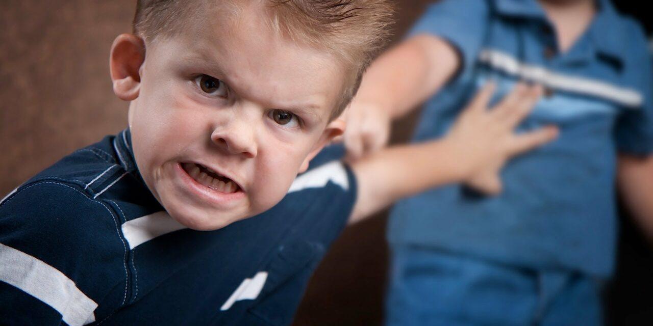 Mitől lesz agresszív a gyerek ?