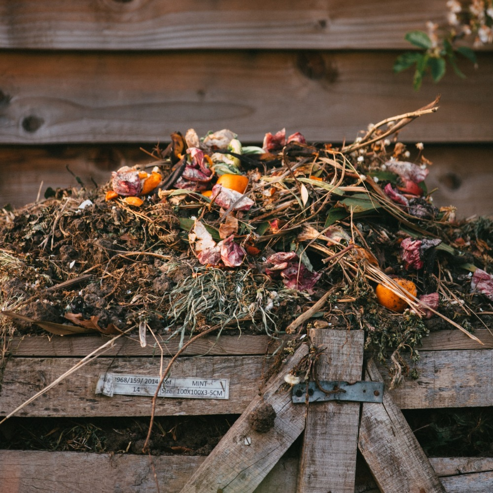 Komposzt, Zöldség, Gyümölcs, Újrahasznosítás
