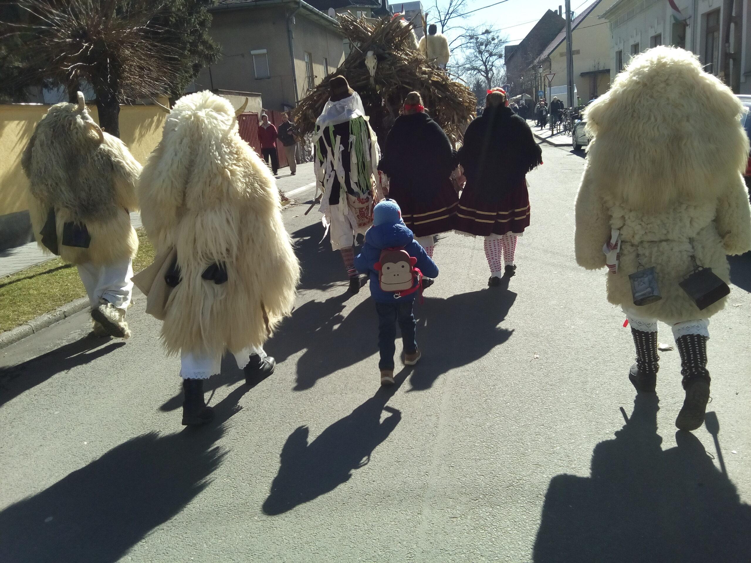 Busójárás, Mohács