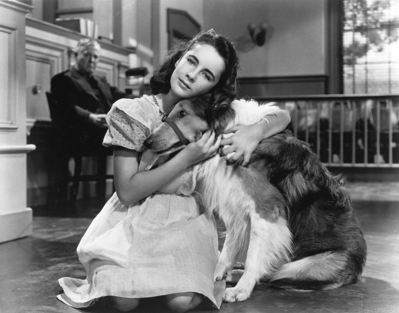 Elizabeth Taylor, Lassie