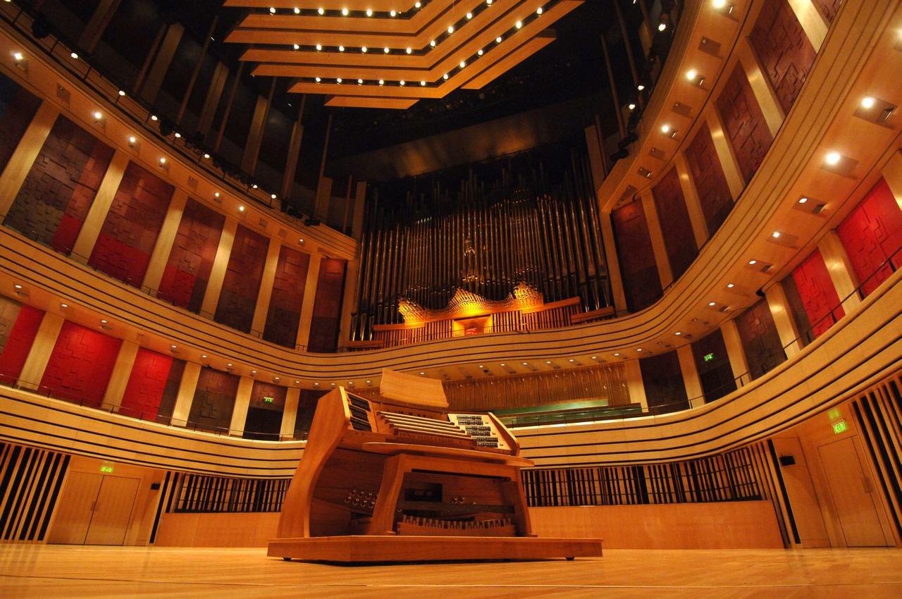 Orgona, koncert