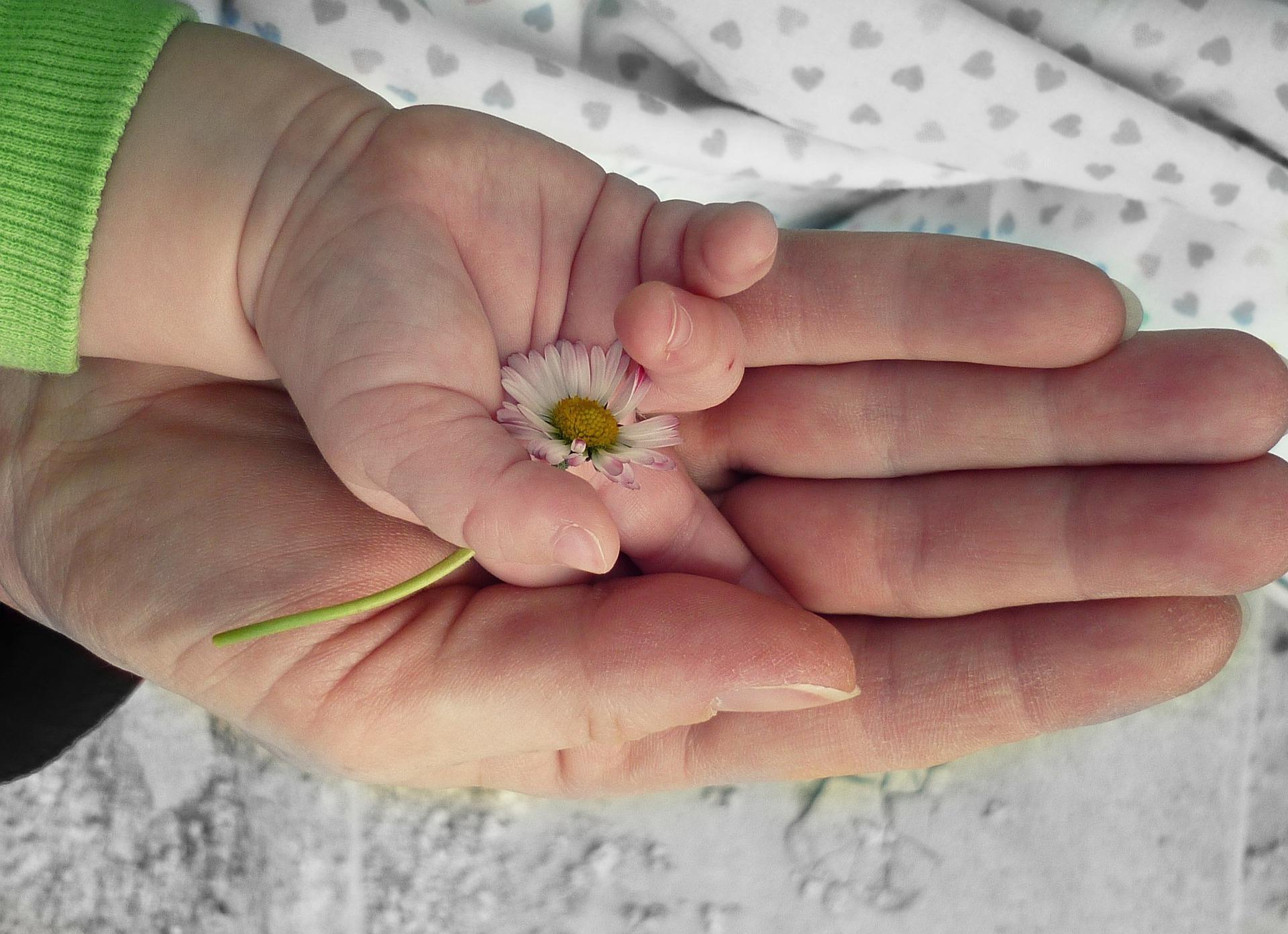 együdlálló anya, anya és gyereke, kezek, virág
