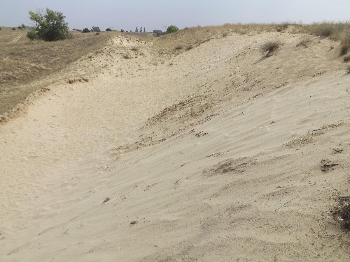 Fülöpháza homokbuckák