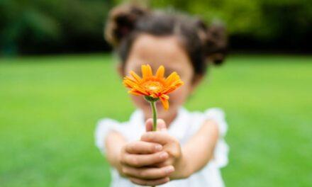 """""""Óriás leszel, csak hunyd le kis szemed""""  <br><p class='alcim'> – merhet-e nagyot álmodni egy kislány?</p>"""
