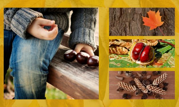 3+1 őszi dísz, amelyet a gyerekekkel is elkészíthetsz