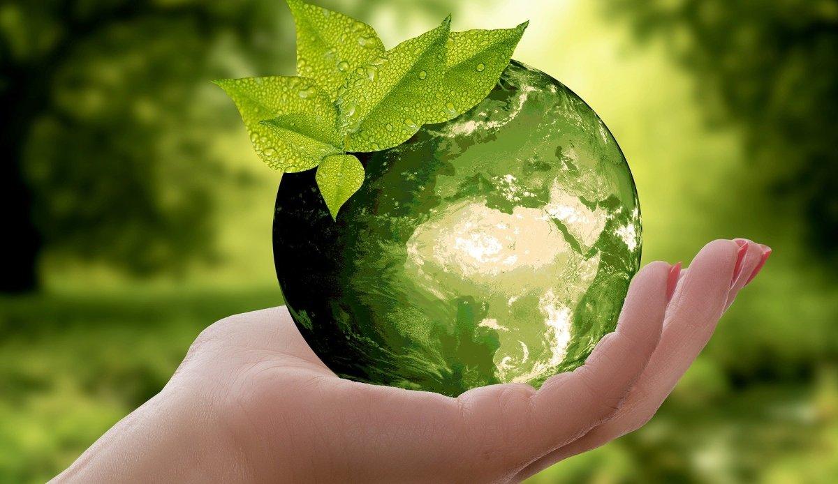 környezettudatosság, 6R, klímaváltozás, Föld megmentése, kis lépések